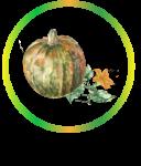 לוגו ייחודי