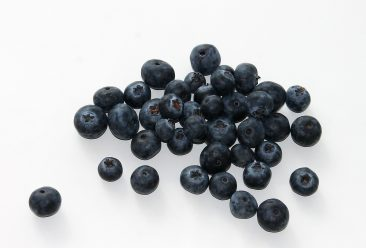 blueberry, fruit, food
